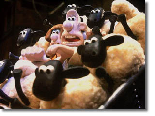 film3_moutons.jpg